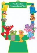 Sesame Street Frame x-Large Size